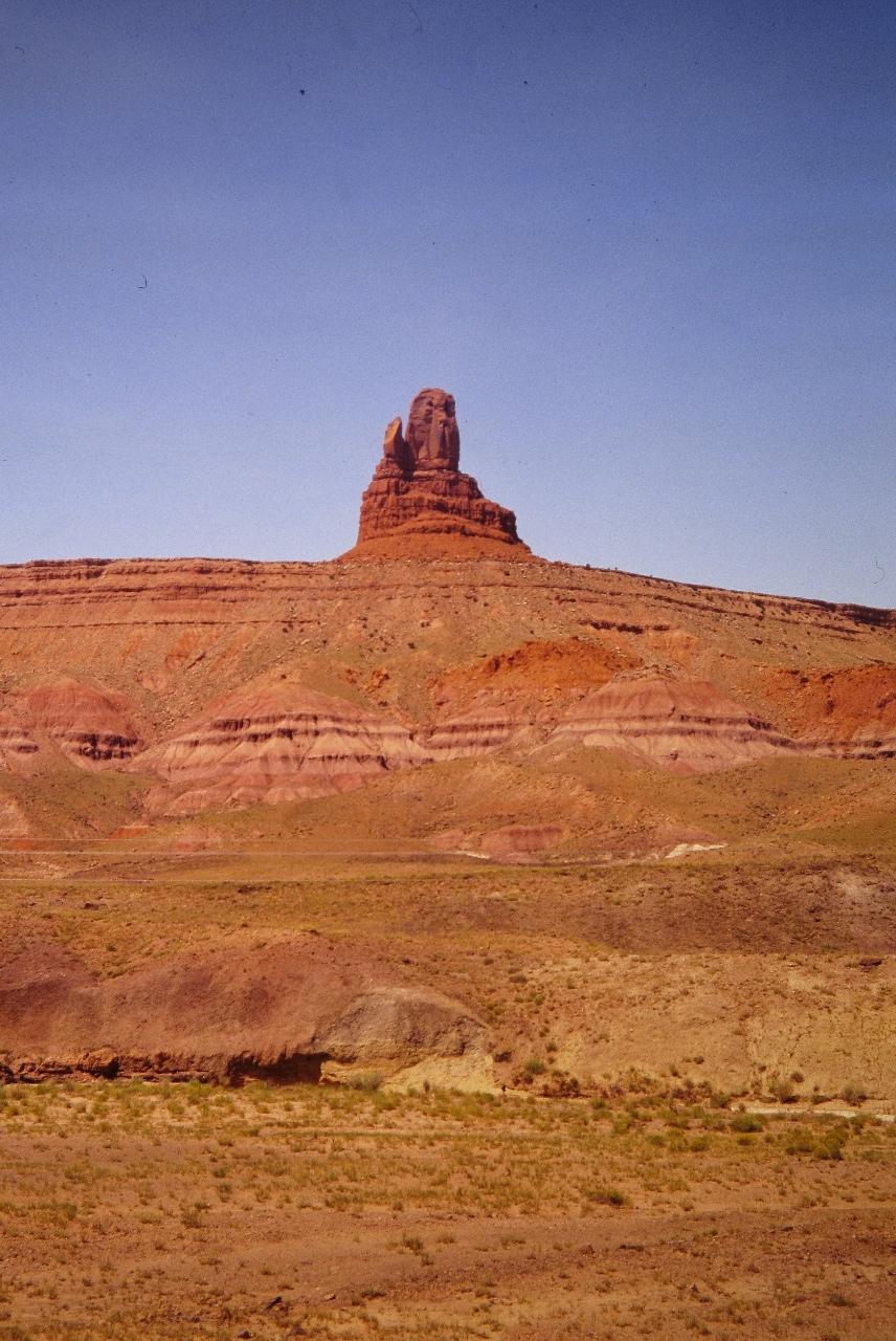 Arizona21