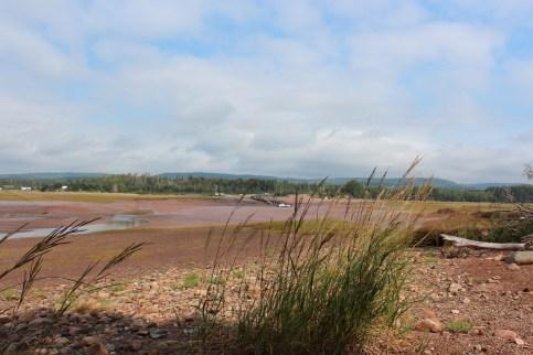 La baie de Fundy a marée basse