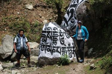 Un yeti..selon les népalais