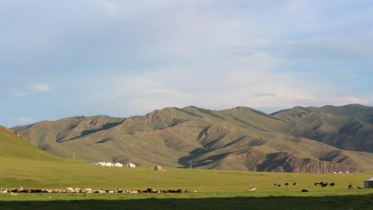 Balade à cheval dans la steppe mongole…