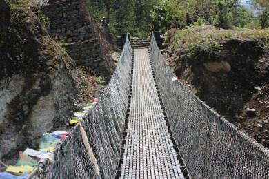beaucoup de ponts suspendus