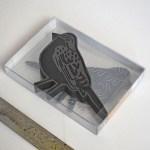 Bird Box Set Photo 02