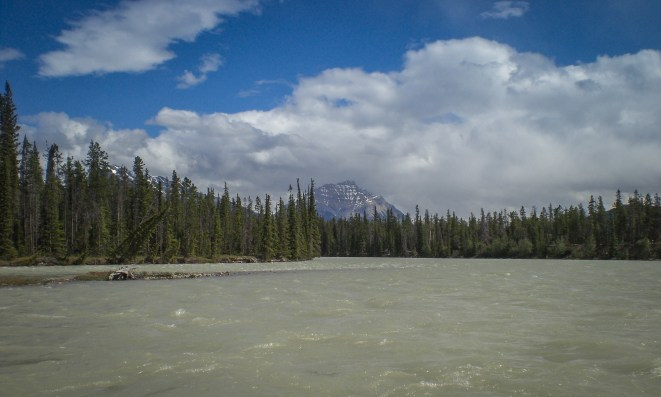 Whitewater rafting on the Athabasca river