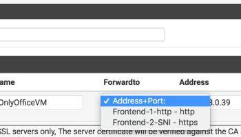 Pfsense Haproxy Reverse Proxy Guide