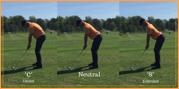 Flexed vs Extended Posture
