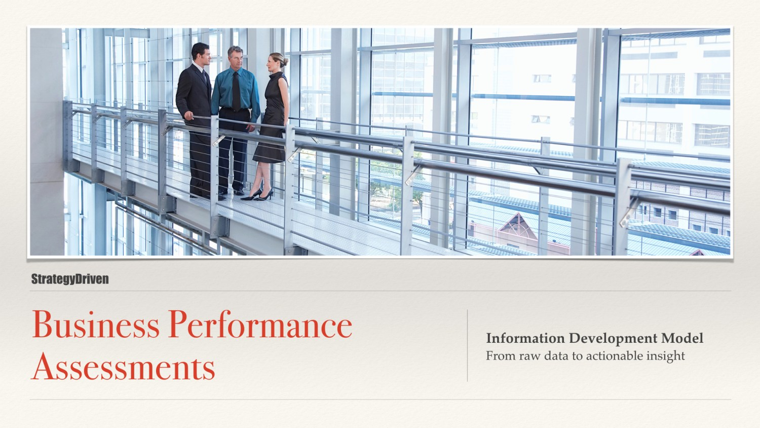 Information Development Model | Maximizing the Value of Business Performance Assessments Training Program | Digital Products Platform | Nathan Ives