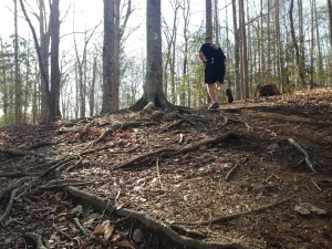 Steep trails at Mountains to sea 50k
