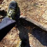 Salomon Sense Mantra trail shoes