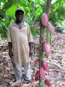 Village chief, Ashanti Region, Ghana