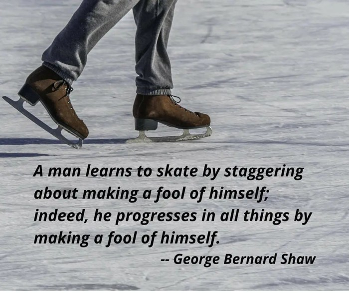 A man learns to skate by staggering about making a fool of himself; indeed, he progresses in all things by making a fool of himself. (1)