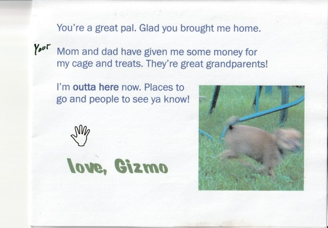 Gyzmo card 2
