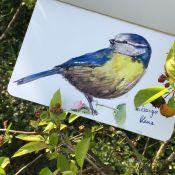 J12- Les oiseaux