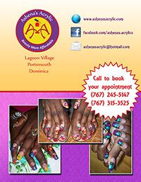 Ashena's Acrylic  2013 Poster