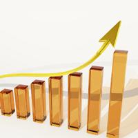 Success Growth