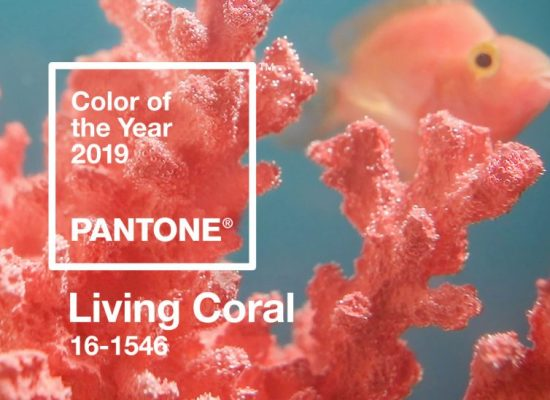 Living Coral banner