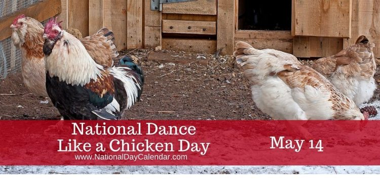 National Dance Like a Chicken Day May 14