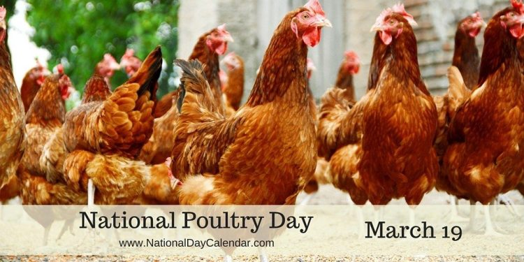 National Poultry Day - March 19