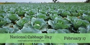 National Cabbage Day - February 17