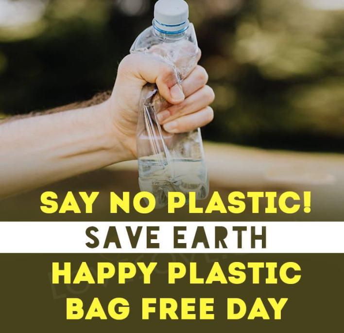 International Plastic Bag Free Day Theme