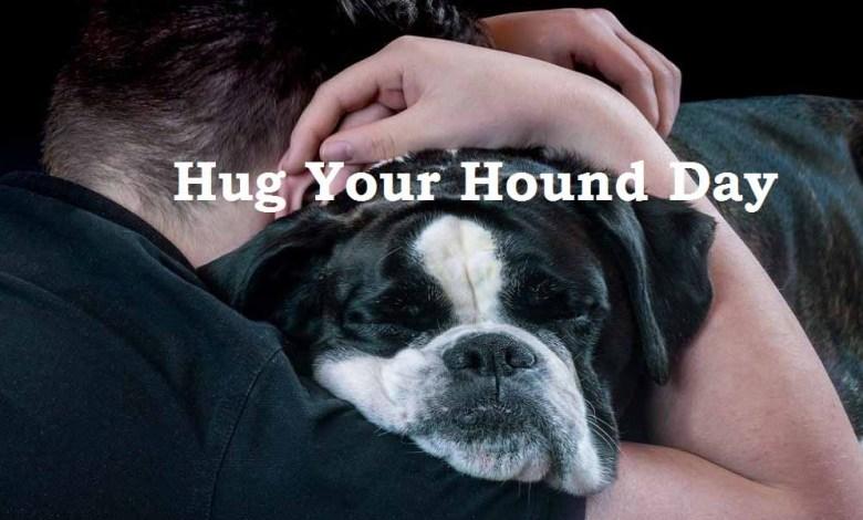 hug your hound day pic