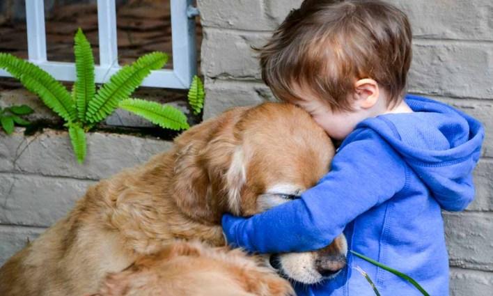 hug your hound day image