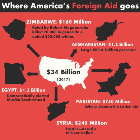 foreign aid infographic