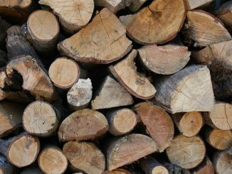 burning wood and dung generates more global energy than wind and solar energy combined