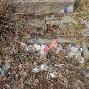 A pile of trash from a Deutsche Bank property in one of Indianapolis' non-white neighborhoods.