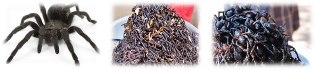 14 crispy tarantula – cambodia