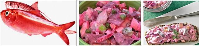 59 pickled herring salad – germany