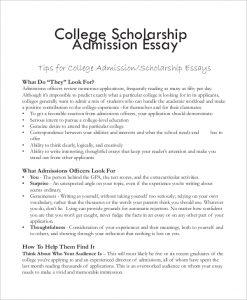 sample college app essays