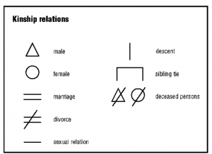 Kinship diagram creator wiring diagram portal free forms 2019 family tree diagram maker free forms rh canhodatgiaresidence org anthropology kinship diagram kinship ccuart Image collections