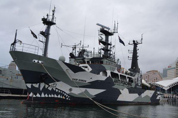 End Games, Part III: Sea Shepherd's Paul Watson, the Ocean ...
