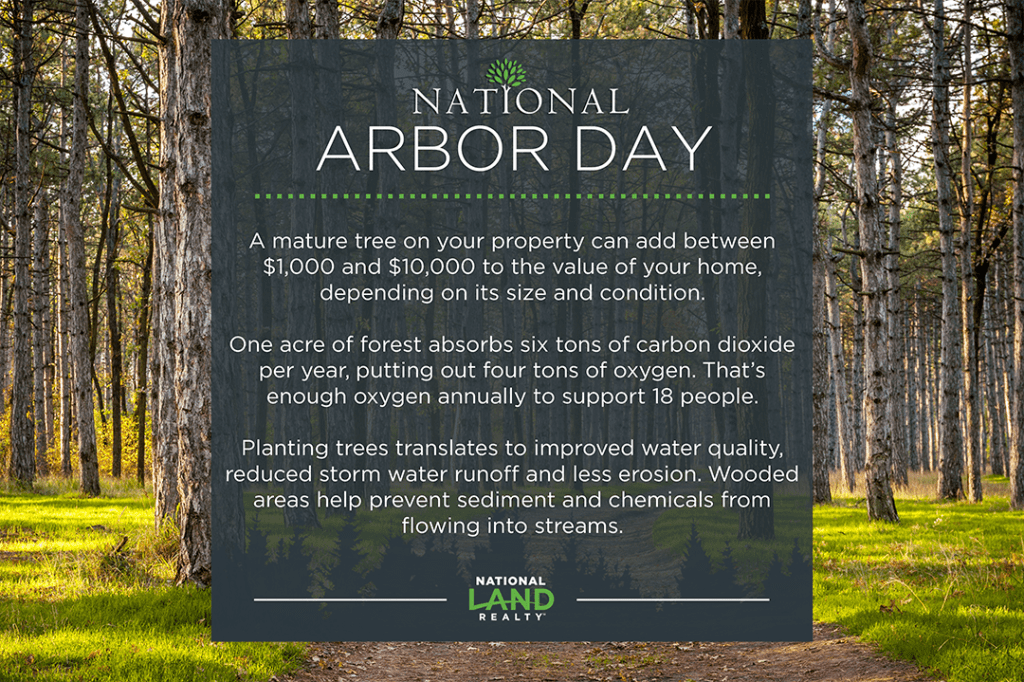 Interesting Facts About Arbor Day National Land Realty Blog - 18 shocking facts nature