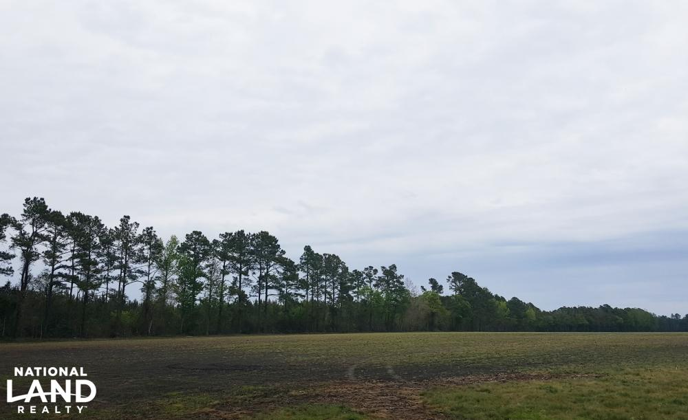 Income Producing Investment Tract listed by Cailein in Brunswick Co, NC