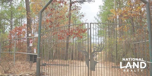 What is High Fence Hunting?