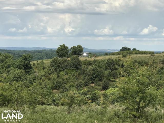 250 Acres Recreational Land Near the Buffalo River