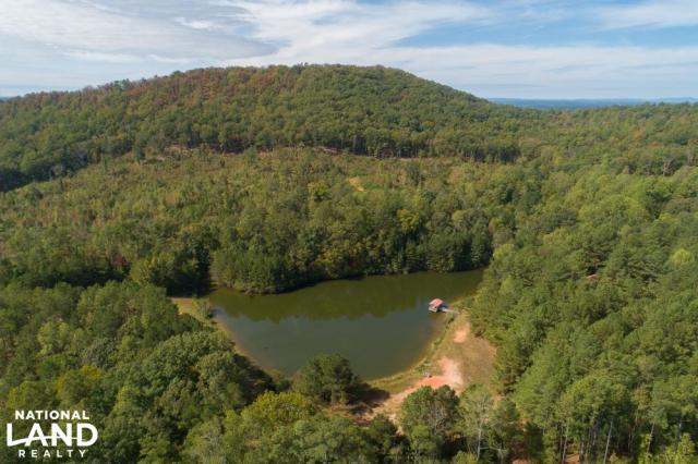 The Tally Mountain Cabin Lake & Hunting Retreat