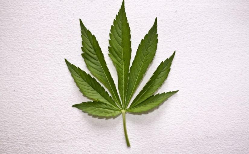 Medical Marijuana Need Not Be Accommodated by New Mexico Employers