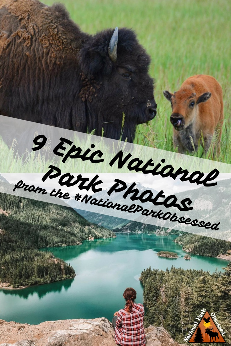 Check out some of the most epic national park photos from the #NationalParkObsessed community. June 2018 was our first month and it has been exciting. #nationalparkgeek #findyourpark #nationalpark #nps #nationalparks