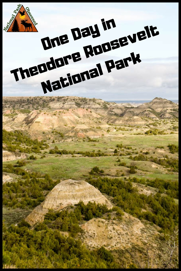 Make the most of your one day visit to Theodore Roosevelt National Park. Teddy Roosevelt National Park is the only national park in North Dakota but its badlands and wildlife is one not to be missed. Check out how to spend one day in Theodore Roosevelt National Park.