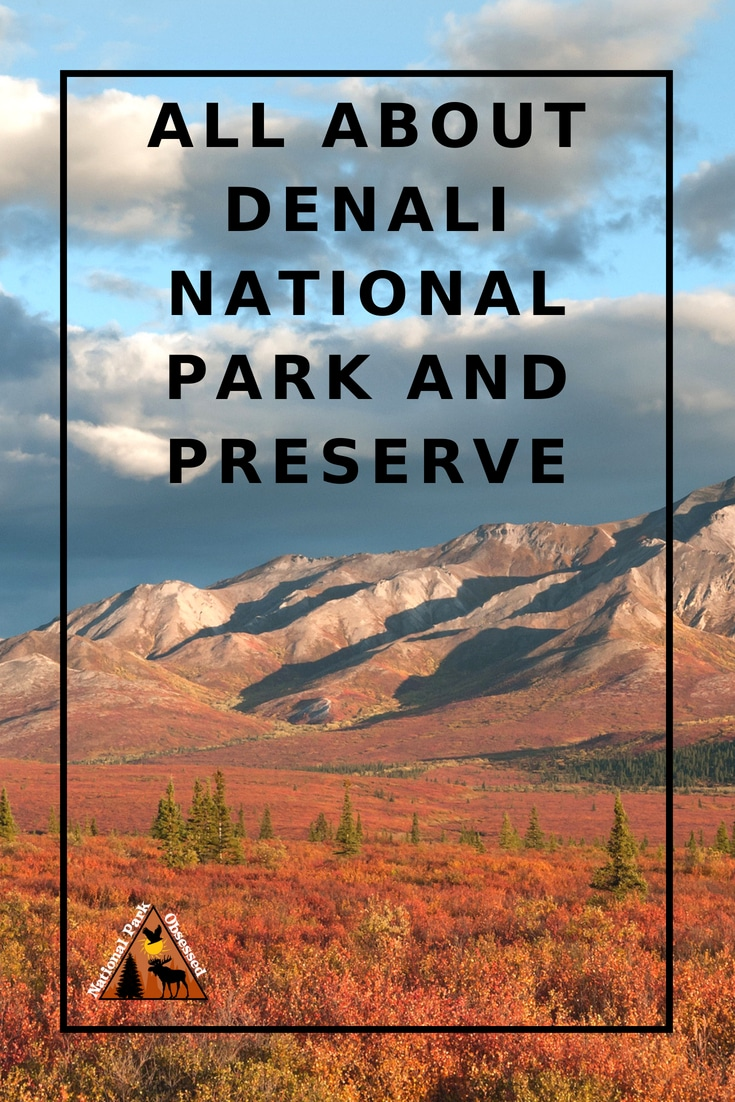 Planning to visit Denali National Park? Don\'t know where to start. Let #NationalParkObsessed help you plan your trip to #Denali with guides, itineraries, things to know and much much more.