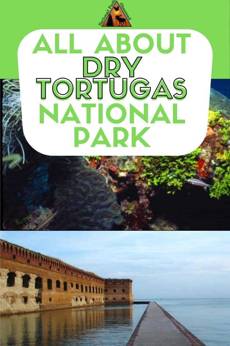 Planning to visit Dry Tortugas National Park, Florida, USA? Don\'t know where to start. Let National Park Obsessed help you plan your trip to #Dry Tortugas with guides, itineraries, things to know and much much more.  #Nationalparkobsessed #nationalpark #findyourpark