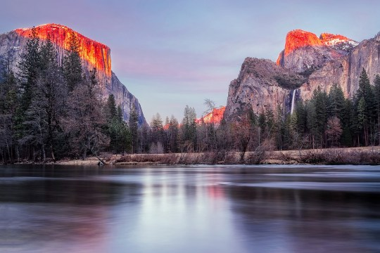 yosemite national park hiking and camping with dogs