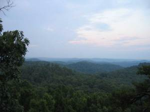 dog info and rules Daniel Boone national forest