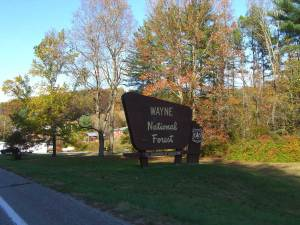 wayne national forest dog pet info