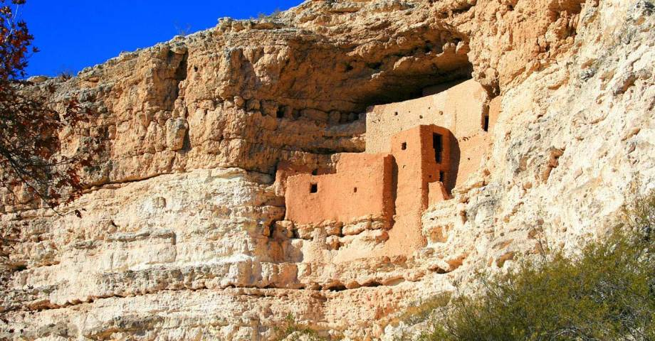dog info and rules montezuma castle national monuments