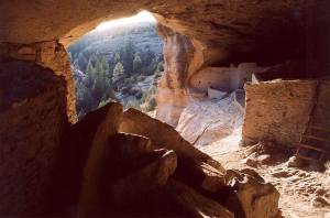 dog info and rules gila cliff dwellings national monuments