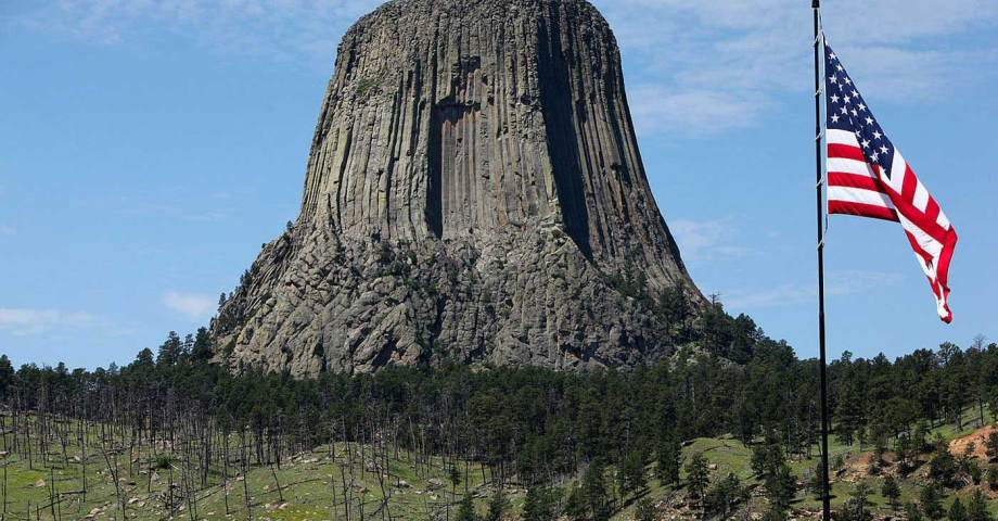 dog info and rules devils tower