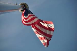 national american flag dog info